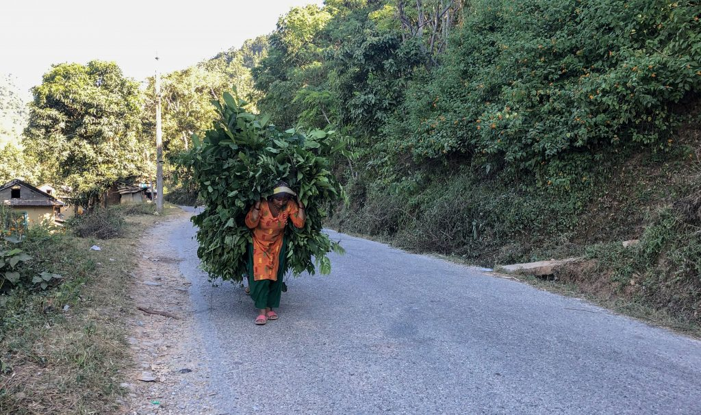 nepalese lifestyle, landscape photos, best beautiful place in nepal, village lifestyle, nepal tourism,nepal kathmandu,history of nepal,nepal area,nepal government,nepal population,nepal news.